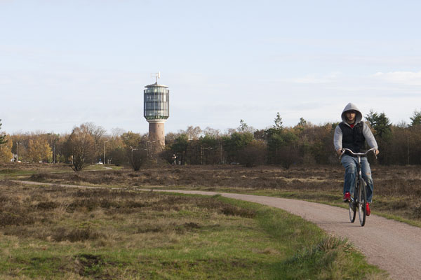 Fietser op heide met watertoren